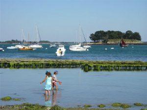 Virée en 420 dans le golfe du Morbihan