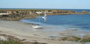 L'île Dumet en Deltania 20